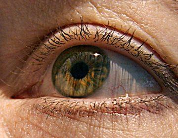 Inteligencia artificial predice rasgos de tu personalidad con el movimiento de tus ojos