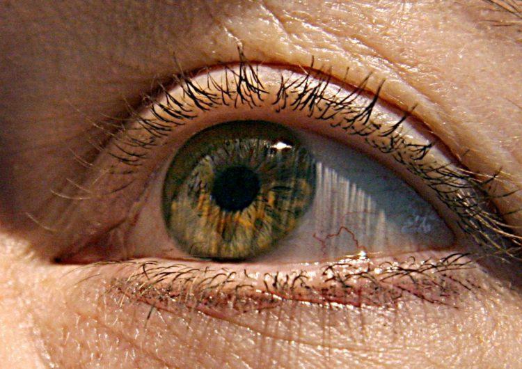 artificial-personalidad-movimiento-ojos-inteligencia