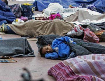 Patrulla Fronteriza de EE. UU. abusó física y verbalmente de menores migrantes, reporta ONG
