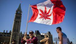 Canadá legaliza el consumo recreativo de la mariguana a partir…