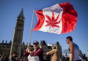 """La marihuana """"gana"""" entre los legisladores de Canadá y está a un paso de su legalización"""