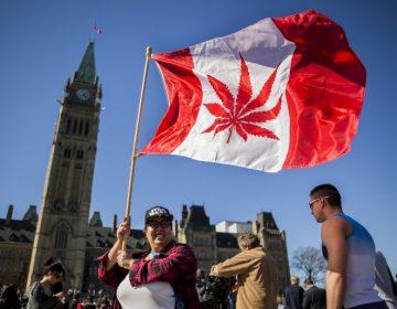 Canadá legaliza el consumo recreativo de la mariguana a partir de octubre