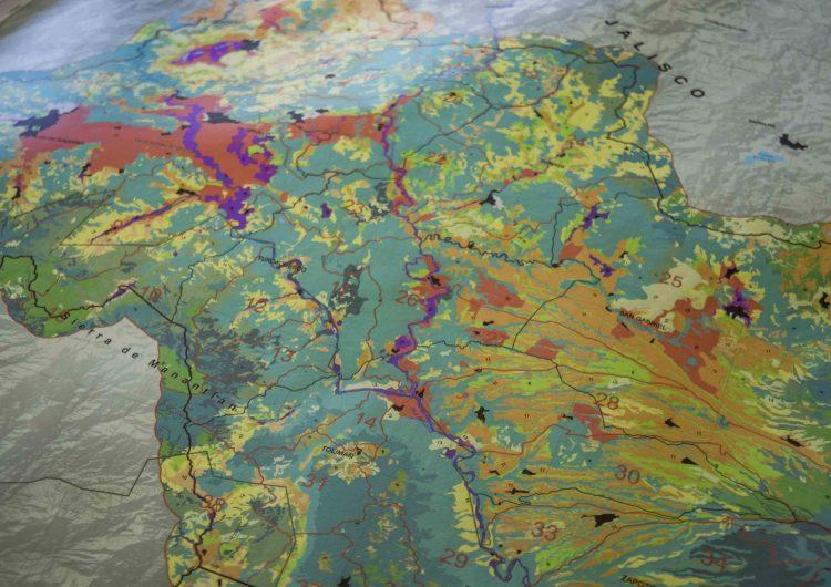 Deforestación al sur de Jalisco en 10 años, iguala casi al total de zona protegida del bosque La Primavera