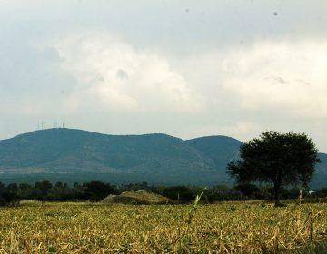 Prometen modernización del campo con nueva Ley Agropecuaria