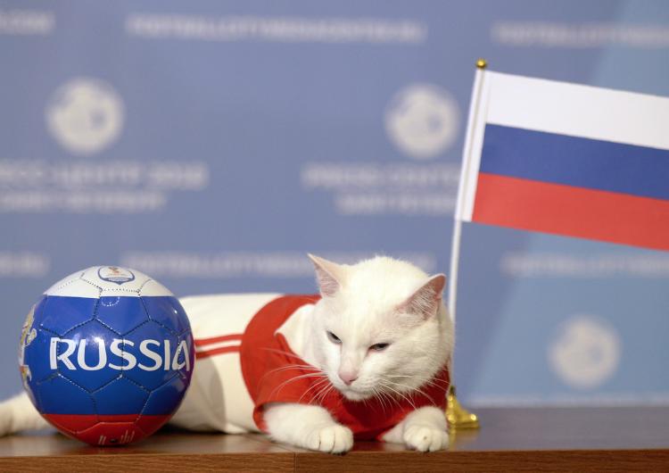 Rusia 2018 para principiantes: Todo lo que necesitas saber sobre el Mundial de futbol