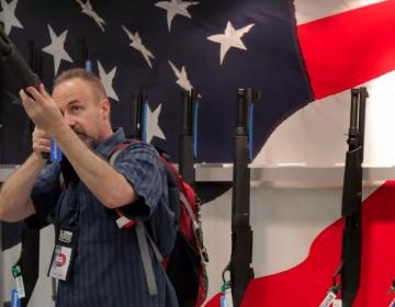 Gobierno de EE.UU. tiene el 40% de las armas de fuego del mundo, según informe