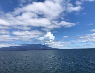 El volcán La Cumbre erupciona en una isla deshabitada de Galápagos