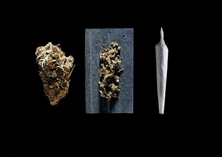 Marihuana, la medicina 'verde' para la epilepsia