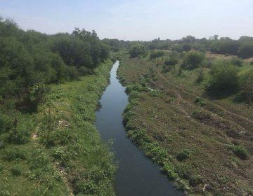 Avanza limpieza en el cauce del Río San Pedro