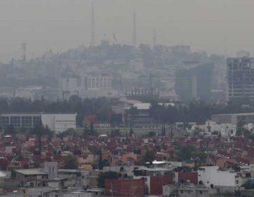 La situación ambiental actual de Puebla es desconocida