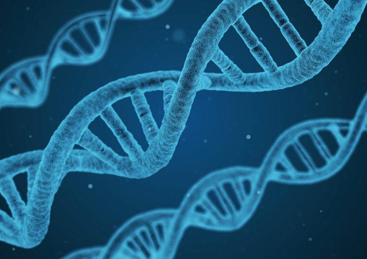 Nuestro ADN sigue siendo un gran misterio