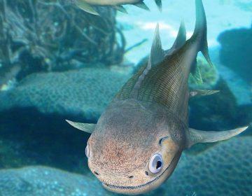 Descubren pez de 400 millones de años de antigüedad que es ancestro de los dinosaurios y los humanos