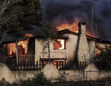 Muertos en sus autos o abrazados en casa: incendios en Grecia dejan cientos de víctimas (fotos)