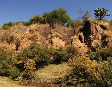 En riesgo construcción de parque industrial por posible daño en Cobos