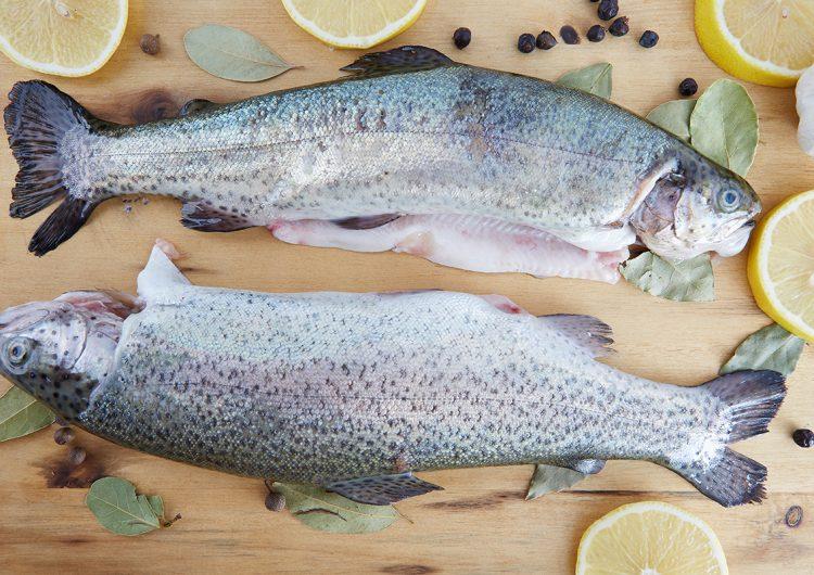 Es momento de cambiar el salmón por la trucha salmonada de México
