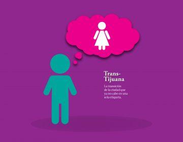 Sociedad en transición