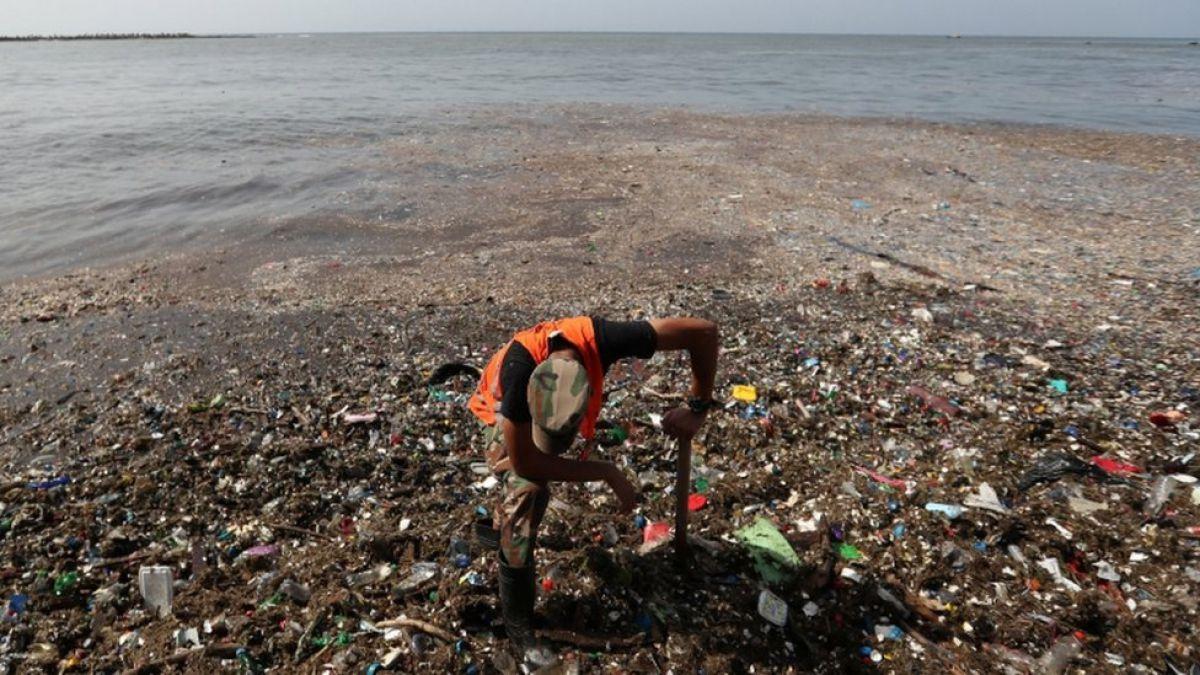 Basura amenaza la vida marina en República Dominicana