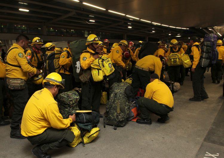 Mandan brigadistas jaliscienses de apoyo contra incendios forestales en Canadá