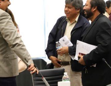 Recibirán nuevos partidos de Hidalgo 409 mp en julio-diciembre