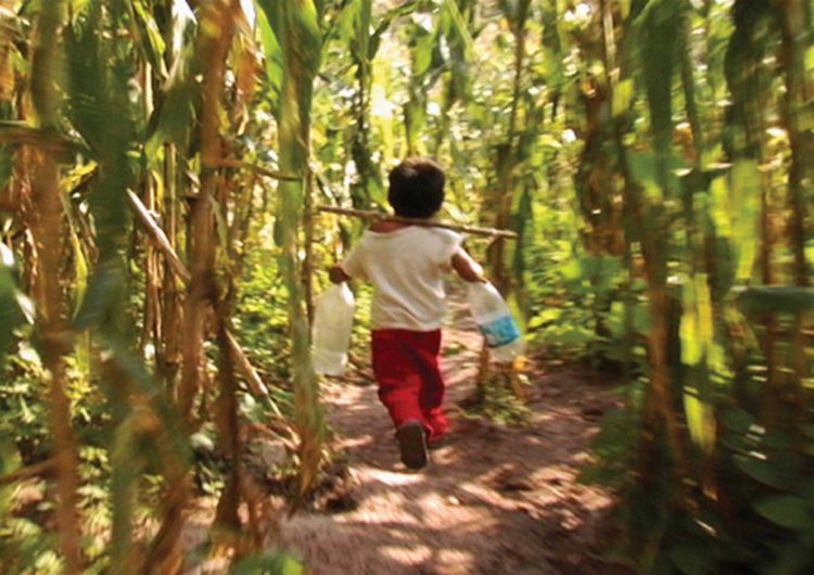 Presentan dos municipios de NL riesgo alto de trabajo infantil: OIT