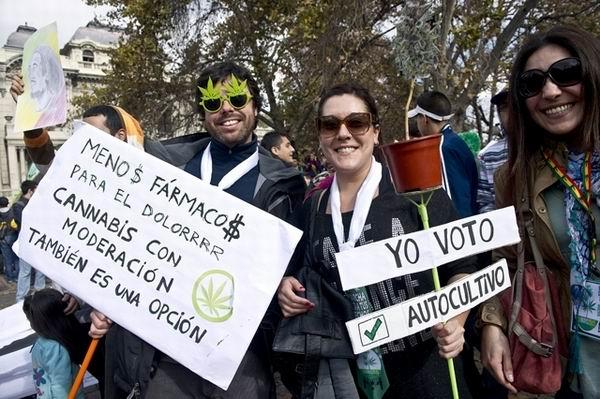 A un año de su legalización, más de 25 mil uruguayos hacen uso de la mariguana, según registro del gobierno
