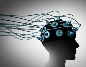 Ciertos estímulos cerebrales  reducen las intenciones violentas, según científicos