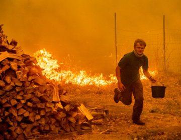 7 fotografías que muestran la devastación del mayor incendio en la historia de California