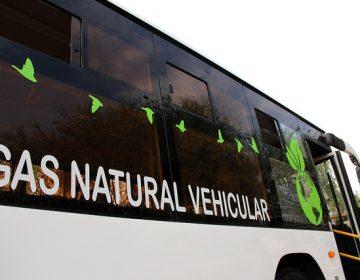 Se registran 77 concesionarios en convocatoria de renovación de camiones urbanos