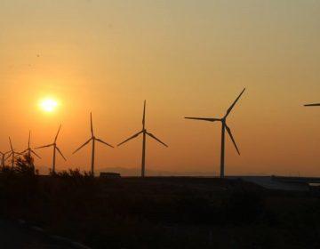 Proponen creación de Centro de Investigación en energía eólica en Oaxaca