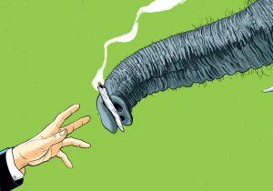 Marihuana legal en EE. UU.: ¿De cuál fuman los republicanos?