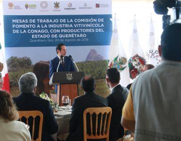 Buscan impulsar la industria del vino en Querétaro