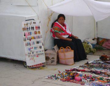 Una radiografía de las comunidades indígenas de Jalisco