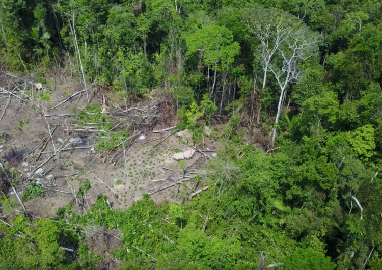 drones-tribu-tribu-aislada