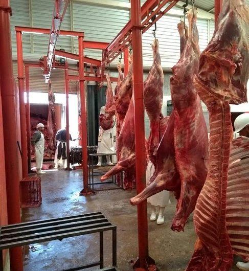 Aseguran casi seis toneladas de carne clandestina en El Llano