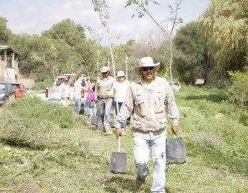 Promueve JM el cuidado del medio ambiente mediante jornadas de reforestación