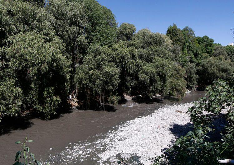Industria, la que más contamina los ríos Atoyac y Alseseca, señala académica Upaep