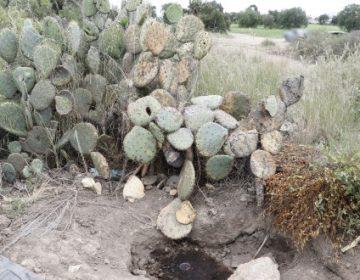 Toma clandestina de La Loma sigue sin ser clausurada
