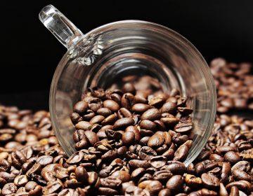 ¿Estamos exagerando sobre los alimentos que nos pueden causar cáncer, incluido el café?