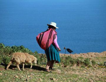 El 13.6% de la población de San Luis Potosí es indígena