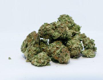 Incrementan 106% los casos de narcomenudeo en la entidad