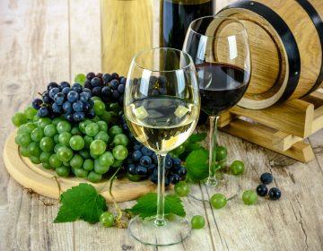 El Concurso Mundial de Vinos llega a Querétaro
