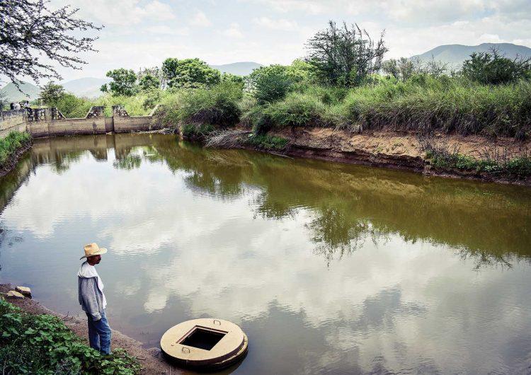 """""""Sembradores de agua"""": la lucha de los campesinos oaxaqueños por los recursos acuíferos"""