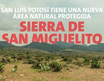 Sierra de San Miguelito en SLP fue declarada área natural protegida