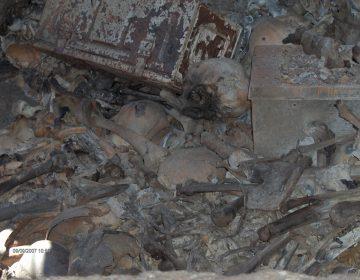 Gobierno de Guanajuato oculta tres fosas clandestinas: Zona Franca