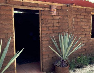 Construyen casa con ladrillos de sargazo, ante desastre ecológico