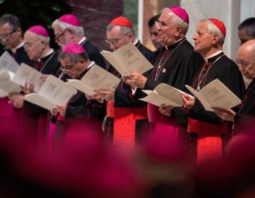 Lanzan línea para denunciar abuso sexual de sacerdotes y un código de conducta para obispos de EE. UU.