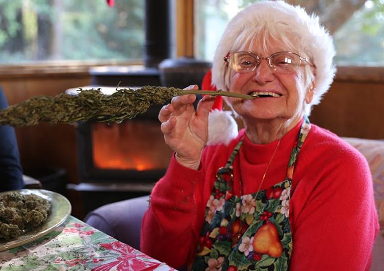 ¿Por qué la mariguana se ha vuelto una droga popular entre los adultos mayores?