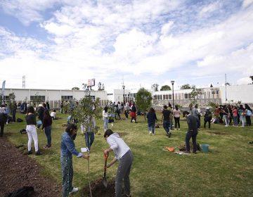 """La BUAP se suma al programa de captación de CO2 """"Planta un árbol"""""""