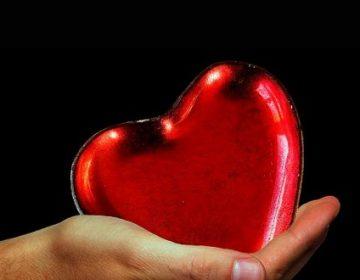 Registra 26 donaciones de órganos en Hidalgo el IMSS