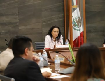 Modificación de pluri, por interpretación de criterios: Guillermina Vázquez
